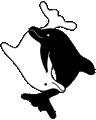 Lucardie – Praktijk voor natuurgeneeswijzen – Dussen